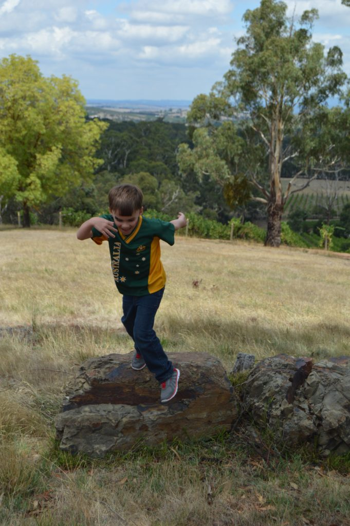 Family-friendly Melbourne- daytrips from the city, plus tips for if you go