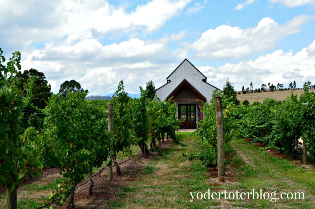 Immerse wedding chapel, Yarra Valley- daytrip from Melbourne