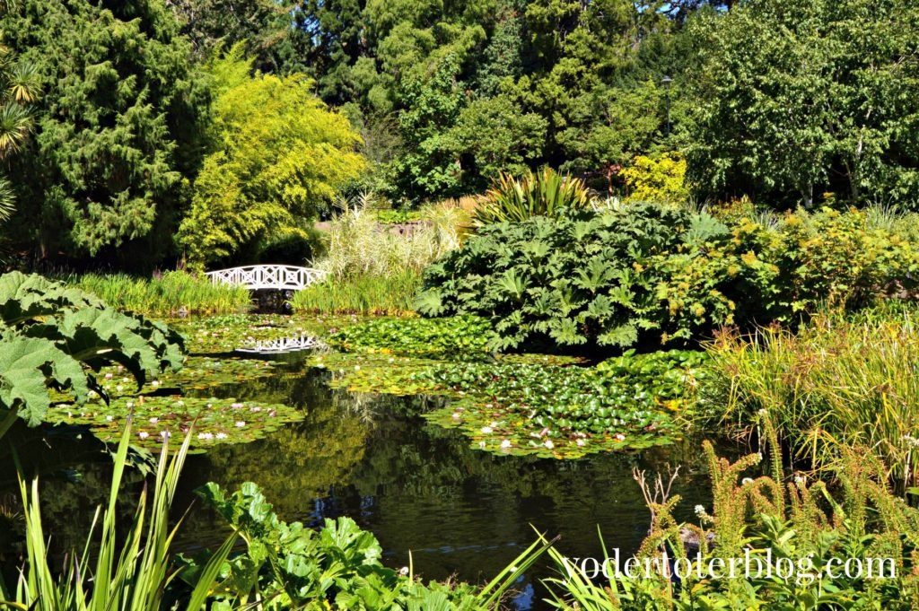 Tasmanian Botanical Gardens- Free excursions Hobart