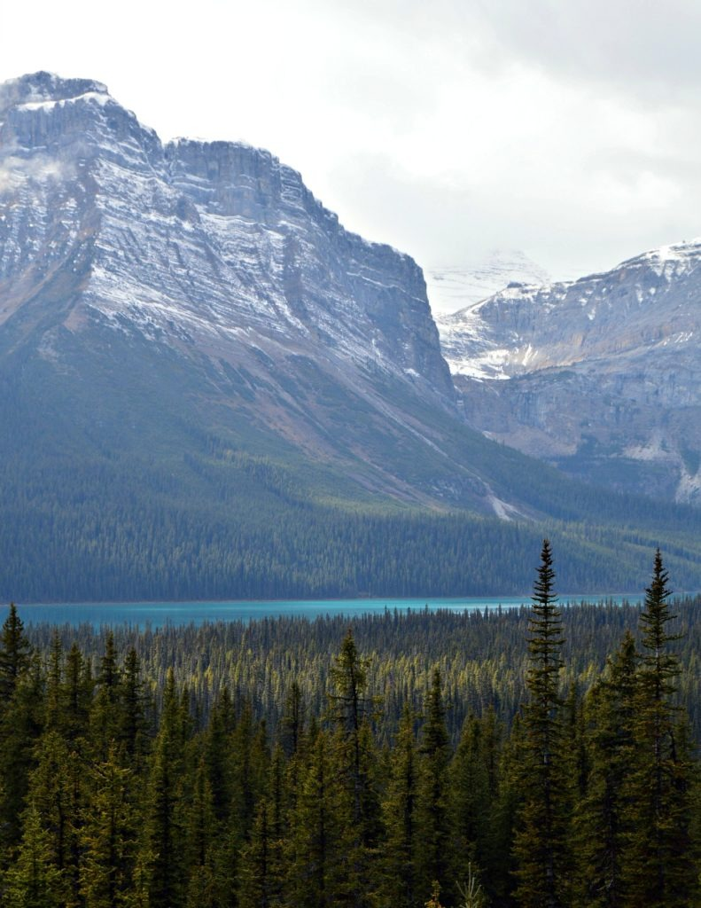 Icefields Parkway within an hour of Lake Louise. Short on time? Visit these stops along with Icefields Parkway in Alberta, Canada.
