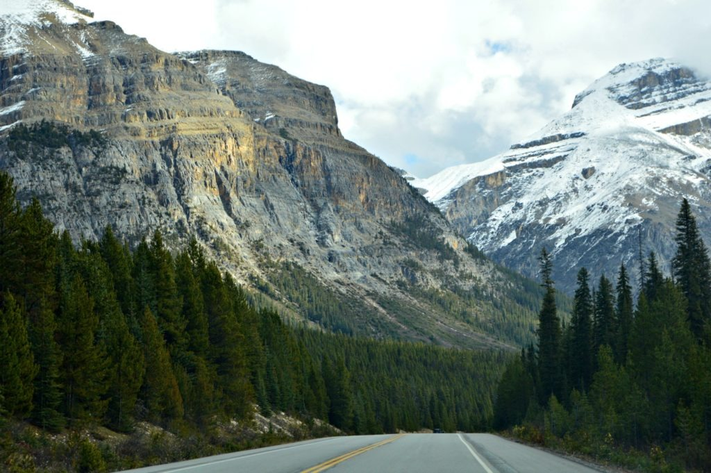 Icefields Parkway within an hour of Lake Louise. Short on time? Visit these stops along the Parkway in Alberta, Canada