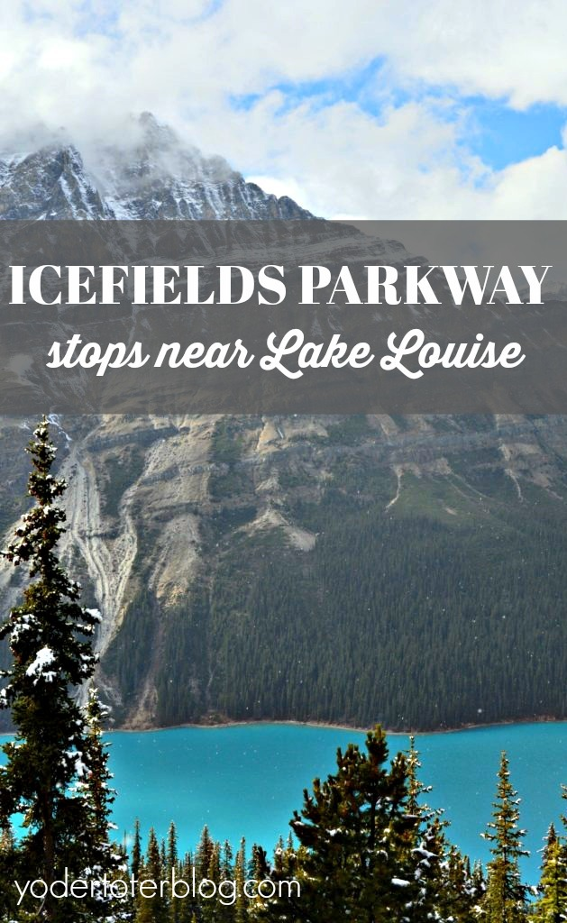 There's plenty to see on the Icefields Parkway near Lake Louise, Alberta, Canada.  You don't have to venture far to see some amazing scenery and mountain grandeur.  Here are my tips for if you go.
