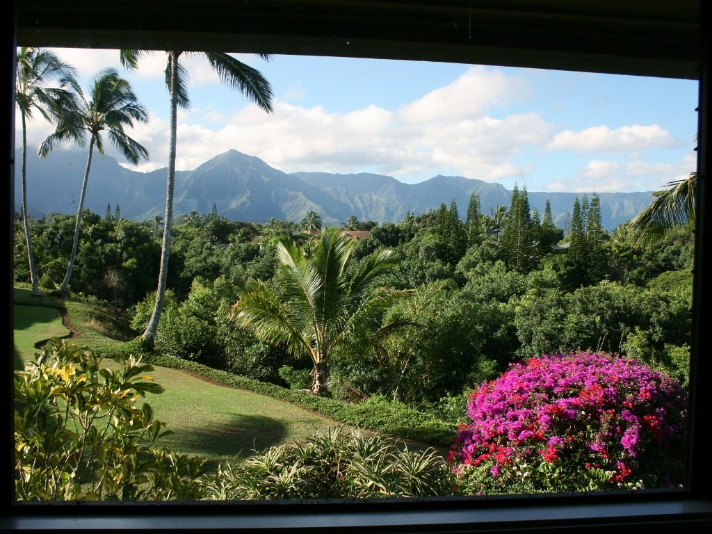 vrbo-view-kauai