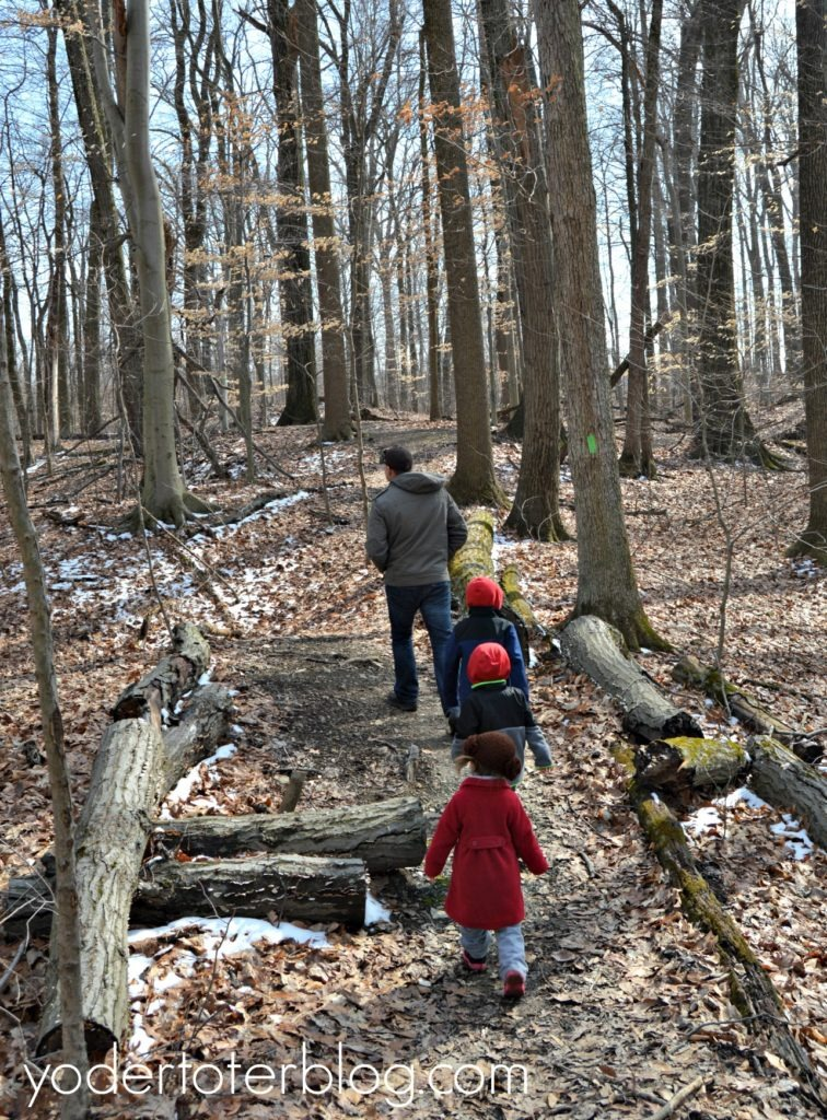 Best Ohio hikes to do as a family  Ohio hiking with kids- Flint Ridge State Park