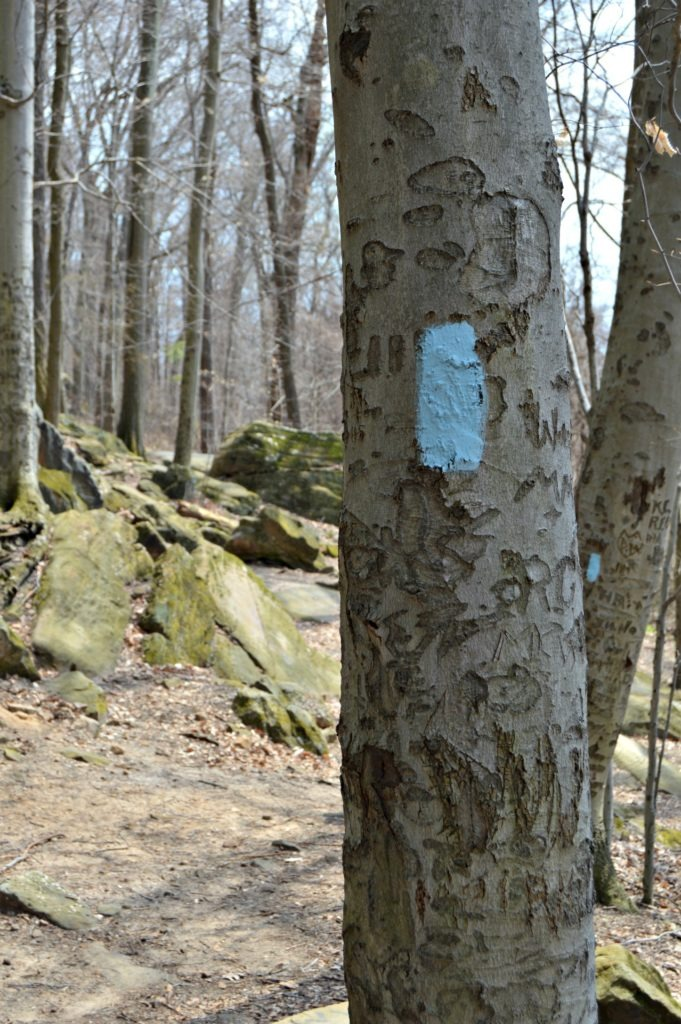 Hiking at Whipps Ledges in Hinckley Reservation