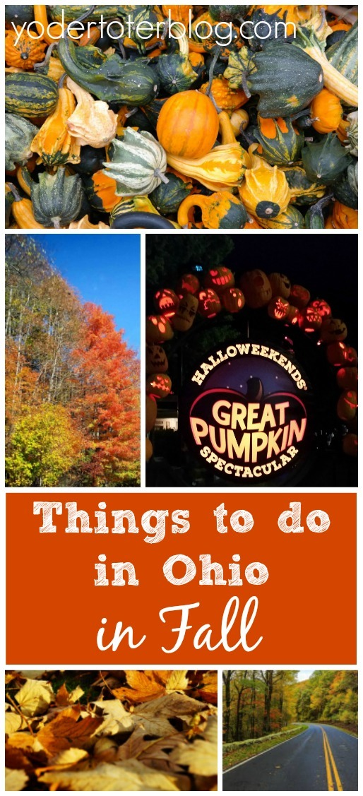 Things to do in Ohio in Fall, Fall festivals in Ohio, Fall activities in Ohio #ohiofindithere #yodertoterblog
