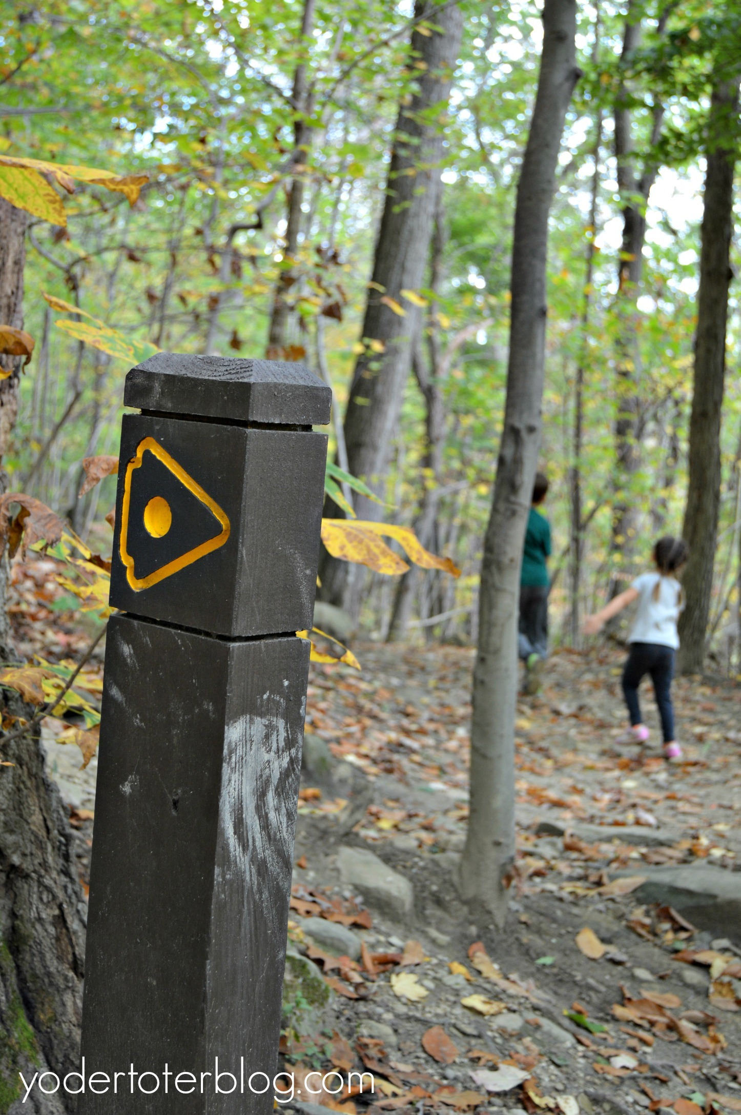 Summit Metro Parks- Gorge Trail