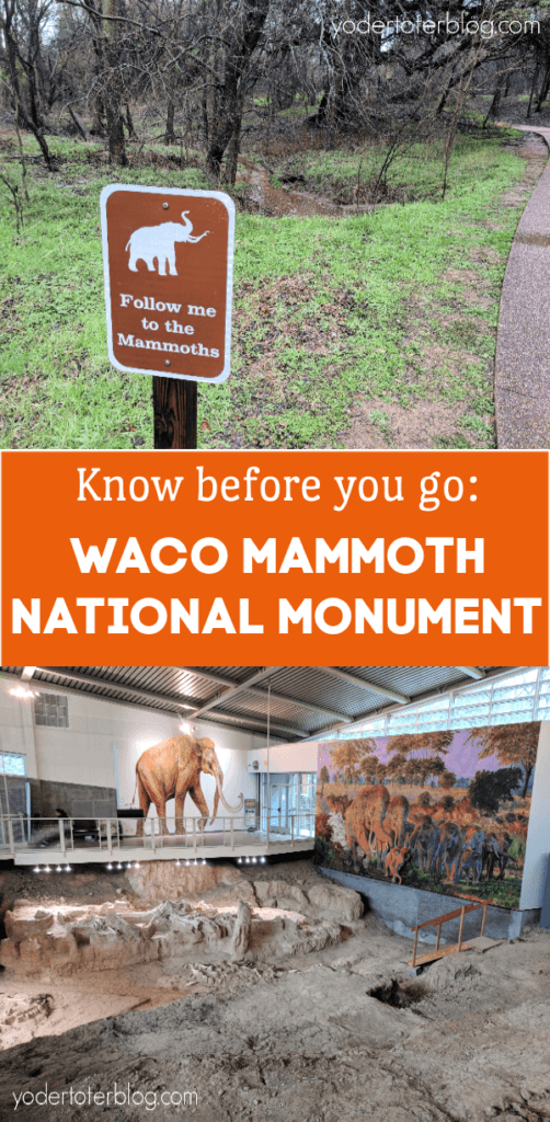 Waco, Texas is full of fun things to do for families!  Don't miss the Waco Mammoth National Monument - where you can learn about a Columbian Mammoth fossil dig inside of a dig shelter.  Learn more about visiting HERE.  #wacotexas