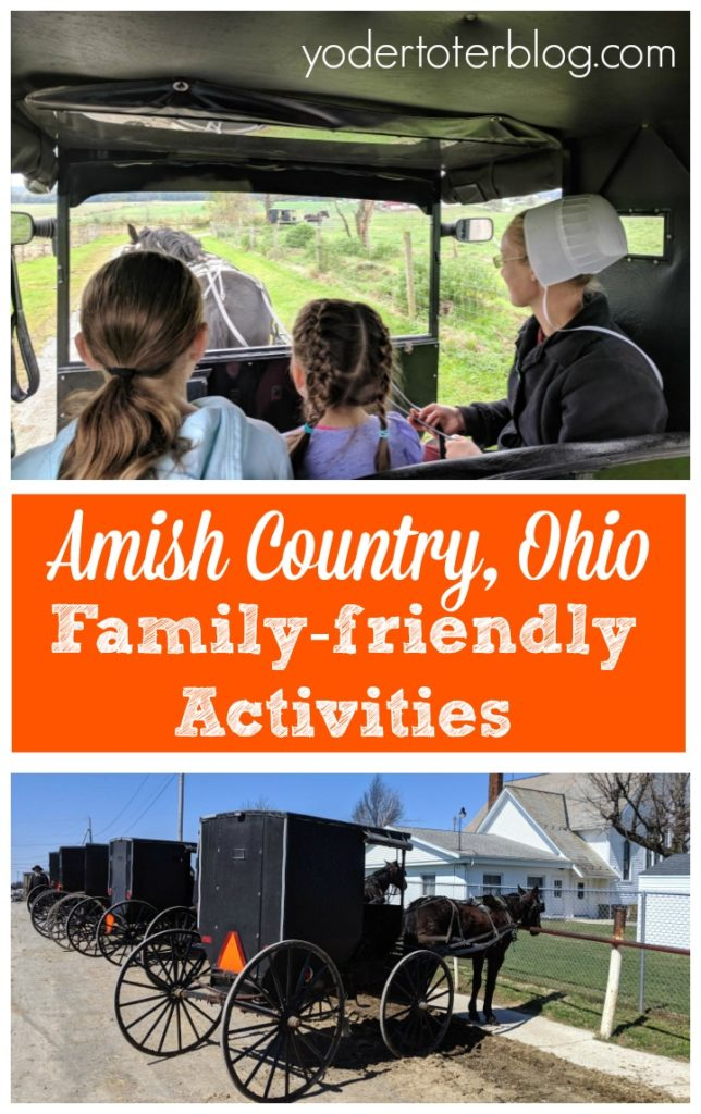 Things to do in Amish Country with kids.  Amish Country, Ohio with the family.  The Farm at Walnut Creek.  Hershberger's Farm.