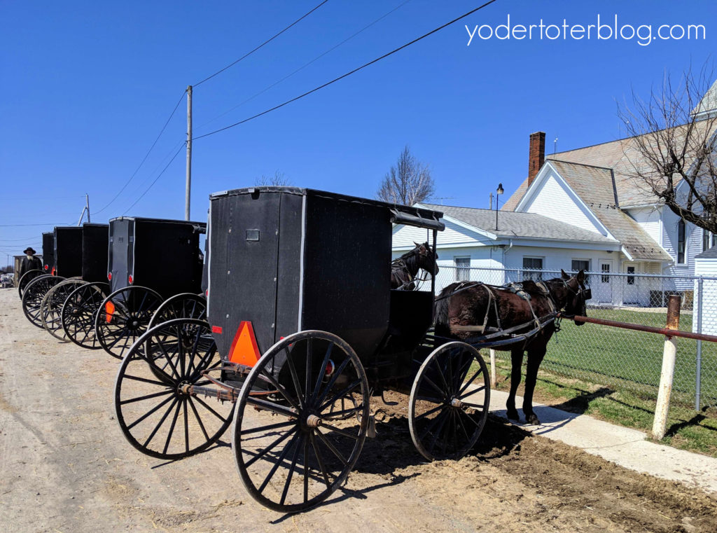 Free things to do in Amish Country, Ohio with kids.  The Mt. Hope Auction offers a chance to visit  a local livestock auction, flea market, and view plenty of horse and buggies.