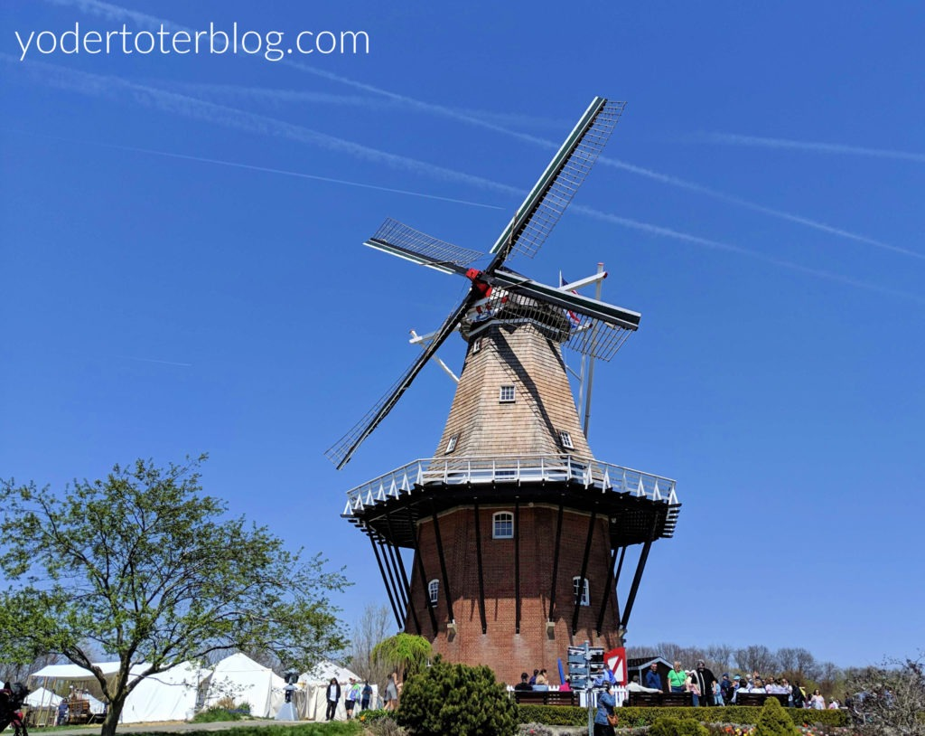 Holland Michigan Tulip Time.  The historic DeZwaan windmill can be found at Windmill Island Gardens.