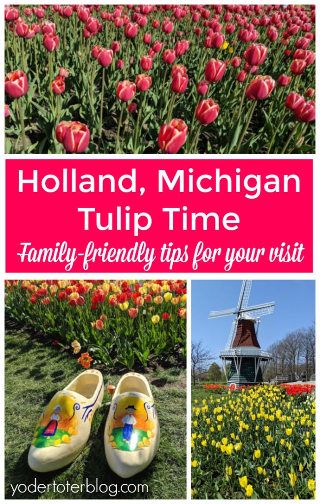 Holland, Michigan Tulip Time.  The best places to view tulips + other tips for visiting Holland.  Things to do in Holland, Michigan including the State Park! #puremichigan