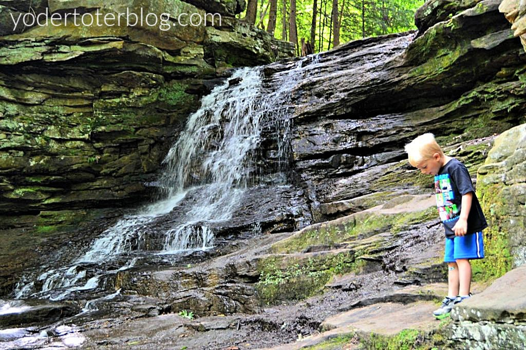 Honey Run falls is a family-friendly waterfall located in Knox County, Ohio.