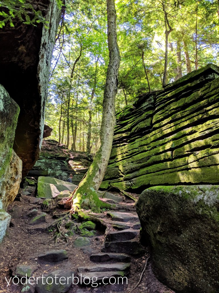 The Ledges Trail in Cuyahoga Valley National Park is one of the best trails and one of our favorites.