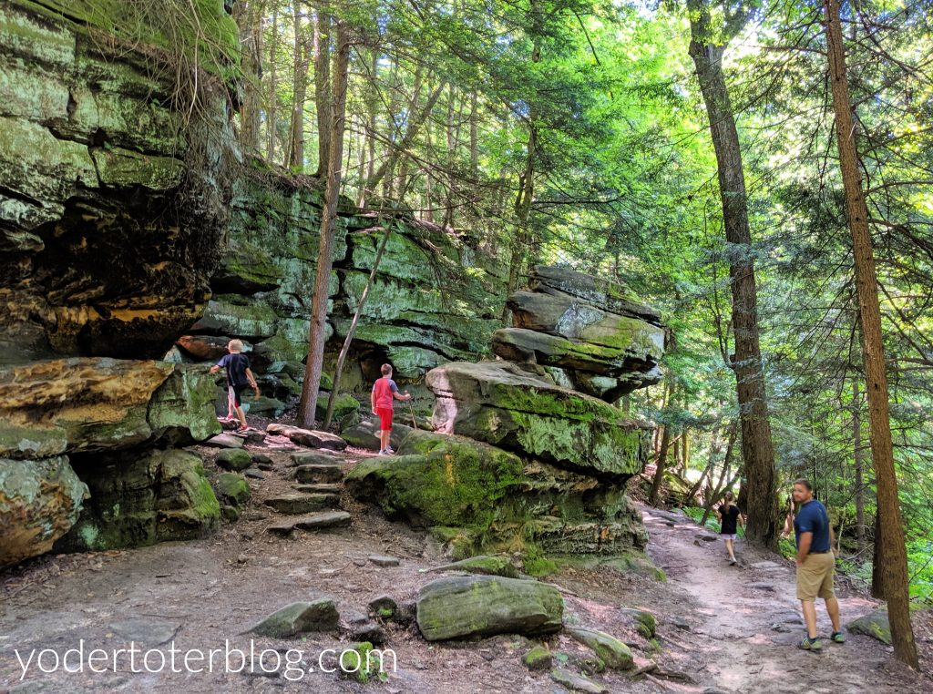 Our favorite trail at Cuyahoga Valley National Park is the Ledges Trail.  Here are my tips for hiking there with kids.