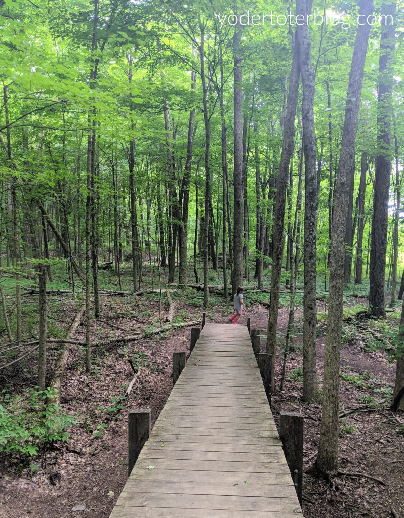 Gorman Nature Center is one of our favorite parks for exploring with kids in the Mansfield, Ohio area.