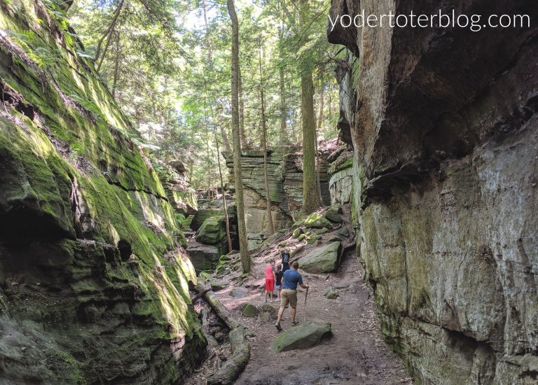 Best hikes in Northeast Ohio - The Ledges Trail at Cuyahoga Valley National Park is one of our favorite hikes in Ohio.