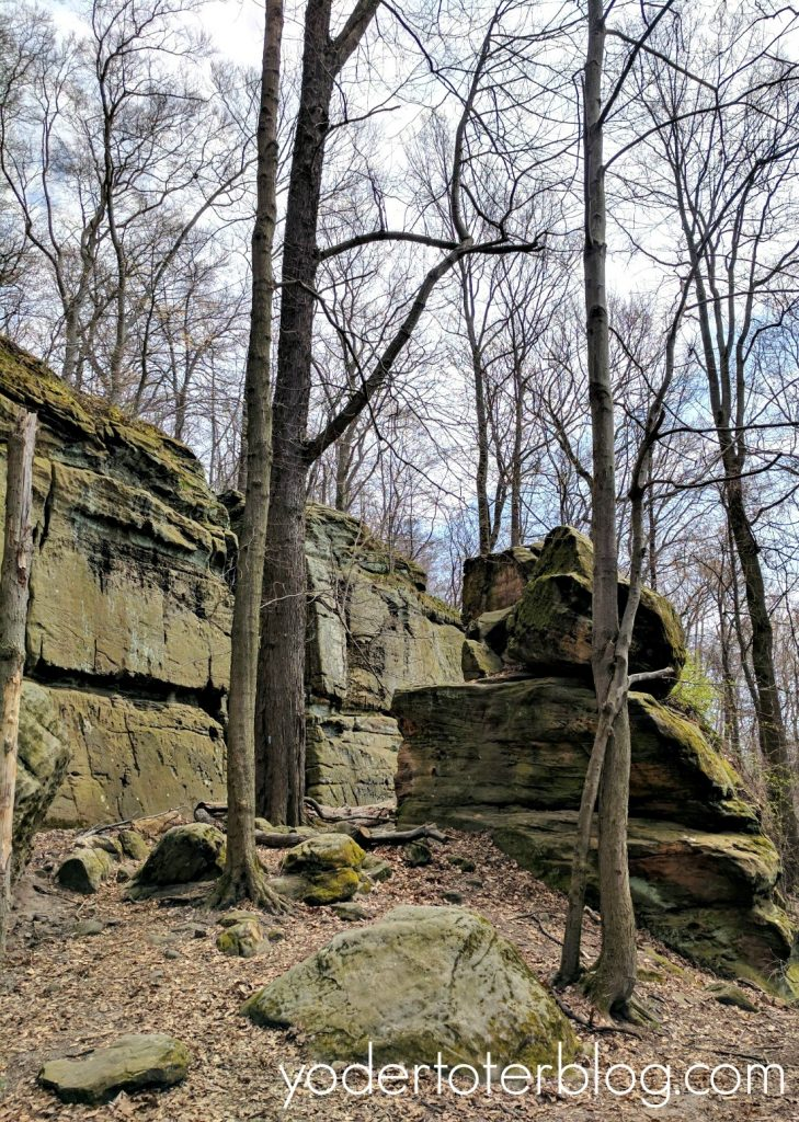 Things to do in Northeast Ohio - Best hikes in Northeast Ohio- Whipp's Ledges in the Cleveland Metroparks is a challenging, but fun, trail in NE Ohio for families.