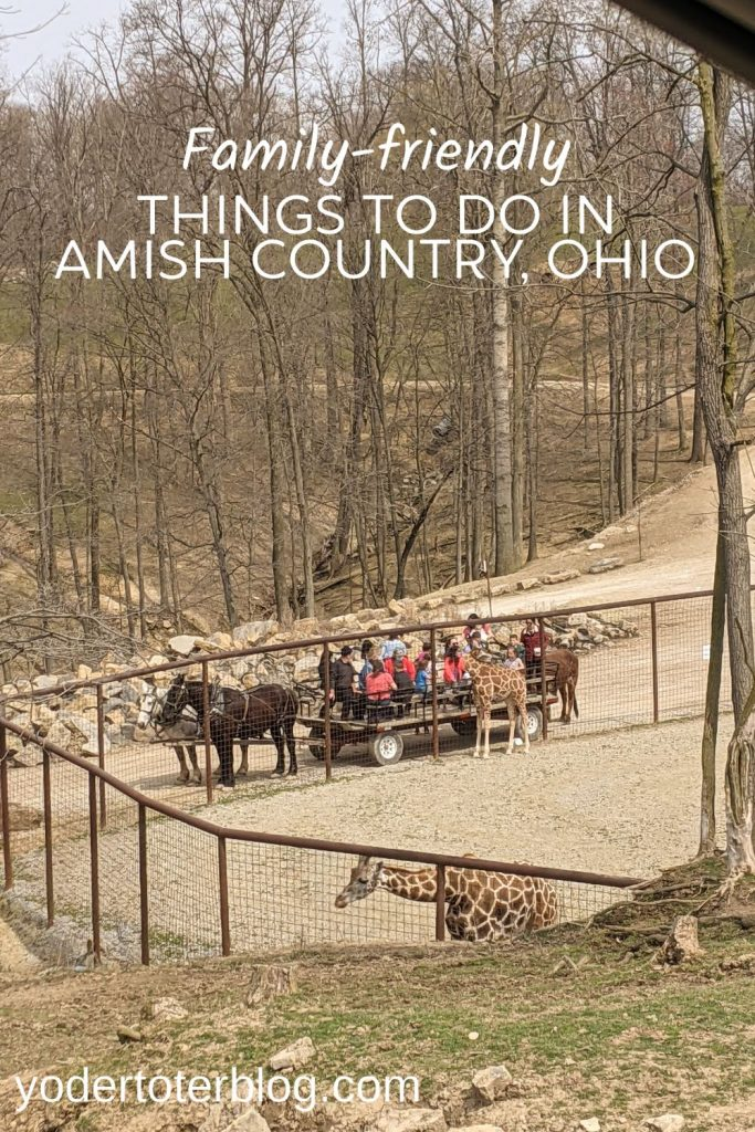 Things to do in Amish Country, Ohio with kids- The Farm at Walnut Creek- Hershberger's Farm & Bakery - Heini's Cheese  - Lehman's Hardware - things to do in Ohio -family-friendly activities