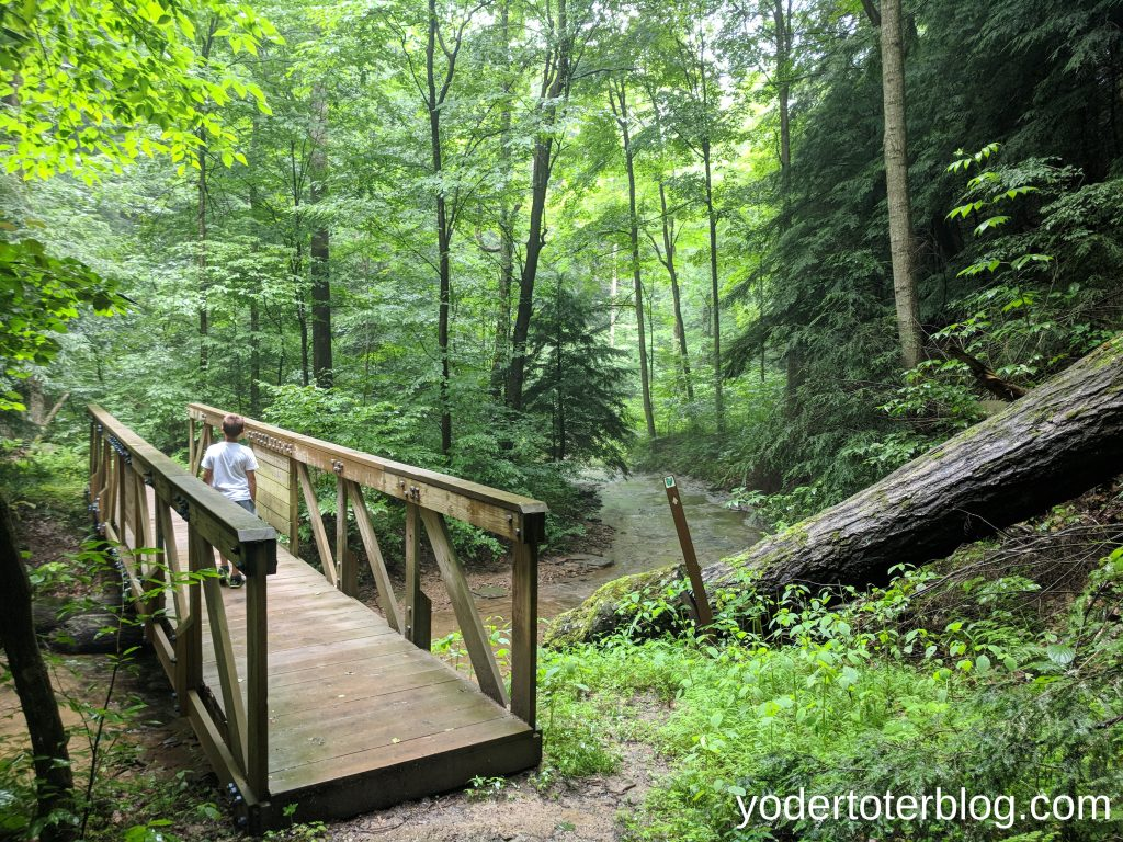 Mohican State Park - Things to do in Mohican State Park with kids - Hog Hollow Trail is an excellent hiking trail.