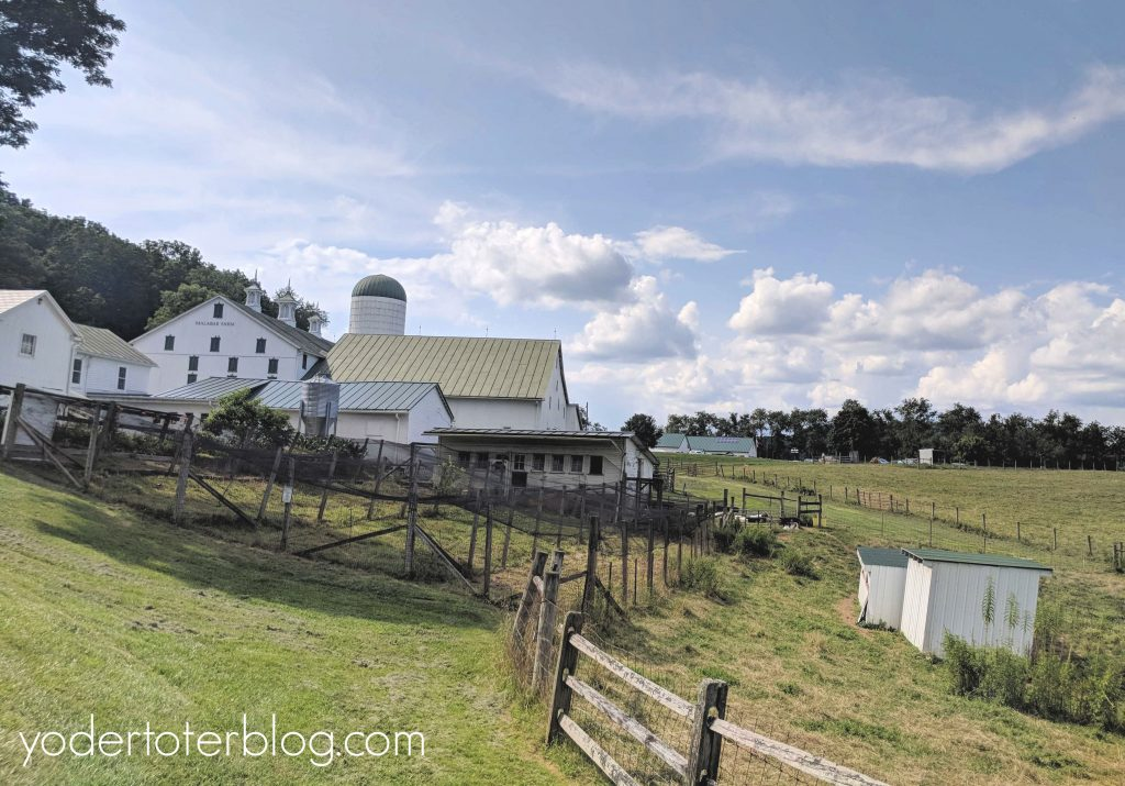 Things to do in Mansfield, Ohio with kids - Malabar Farm
