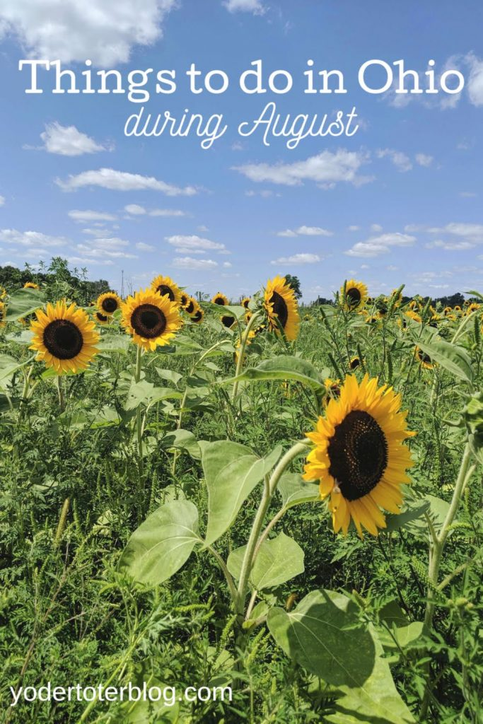 Things to do in Ohio during August.  Summer isn't over yet!  Here's my list of things to keep your family busy during August.