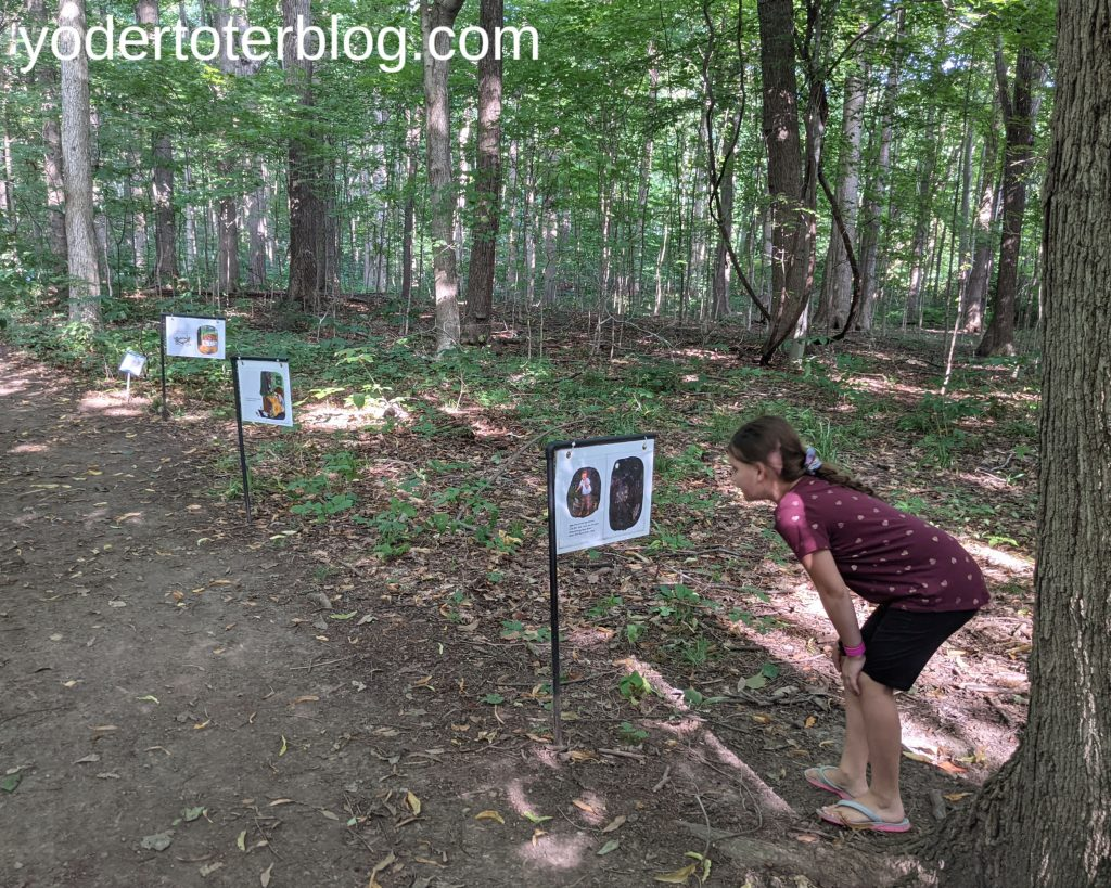Ohio Fairy Trail - Fairy Trail at Infirmary Mound Park in Granville, Ohio